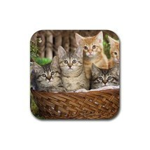 Tabby kitty kitten cat cats 2 rubber coaster  square 2 thumb200