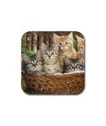 Cute Sweet Basket Tabby Cat Kitty Kitten Pet Animal (Square) Rubber Coaster - £1.55 GBP