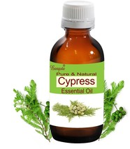 Cypress Oil- Pure Natural Essential Oil- 10ml Cupressus sempervirens by ... - $10.72