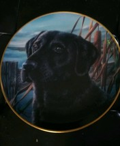 Franklin Mint Man's Best Friend By Randy McGovern, Limited Edition, Retired - $9.00