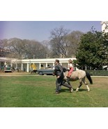 Caroline Kennedy rides her pony Macaroni on the White House lawn New 8x1... - $6.61