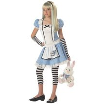 Child's Alice Costume Tween Size Lg 10-12 - $40.85