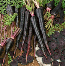 100pcs Black Nebula Carrot Seeds,Very Healthy Vegetables IMA1 - $13.99