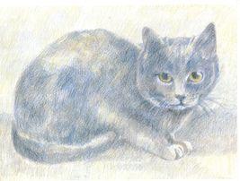 Cross Stitch Si Sawat The Korat Thai Cat Kitten Feline Pattern - $6.99