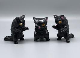 Max Toy Monster Boogie Black Cat Set image 3