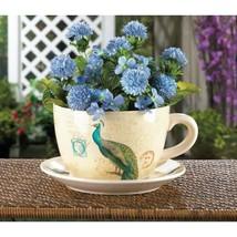 Peacock Teacup Planter - $28.00