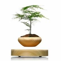 Magnetic Levitation Air Bonsai Suspension Levitating Flower Pot Plant LE... - $119.99