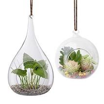 2 Pack Glass Hanging Planter Hanging Air Plant Terrarium Pots Heat-Resis... - $12.85