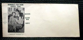 vintage AVONDALE FUR FARM ENVELOPE pa J.SMEDLEY THOMAS raccoons,mink,rab... - $24.95