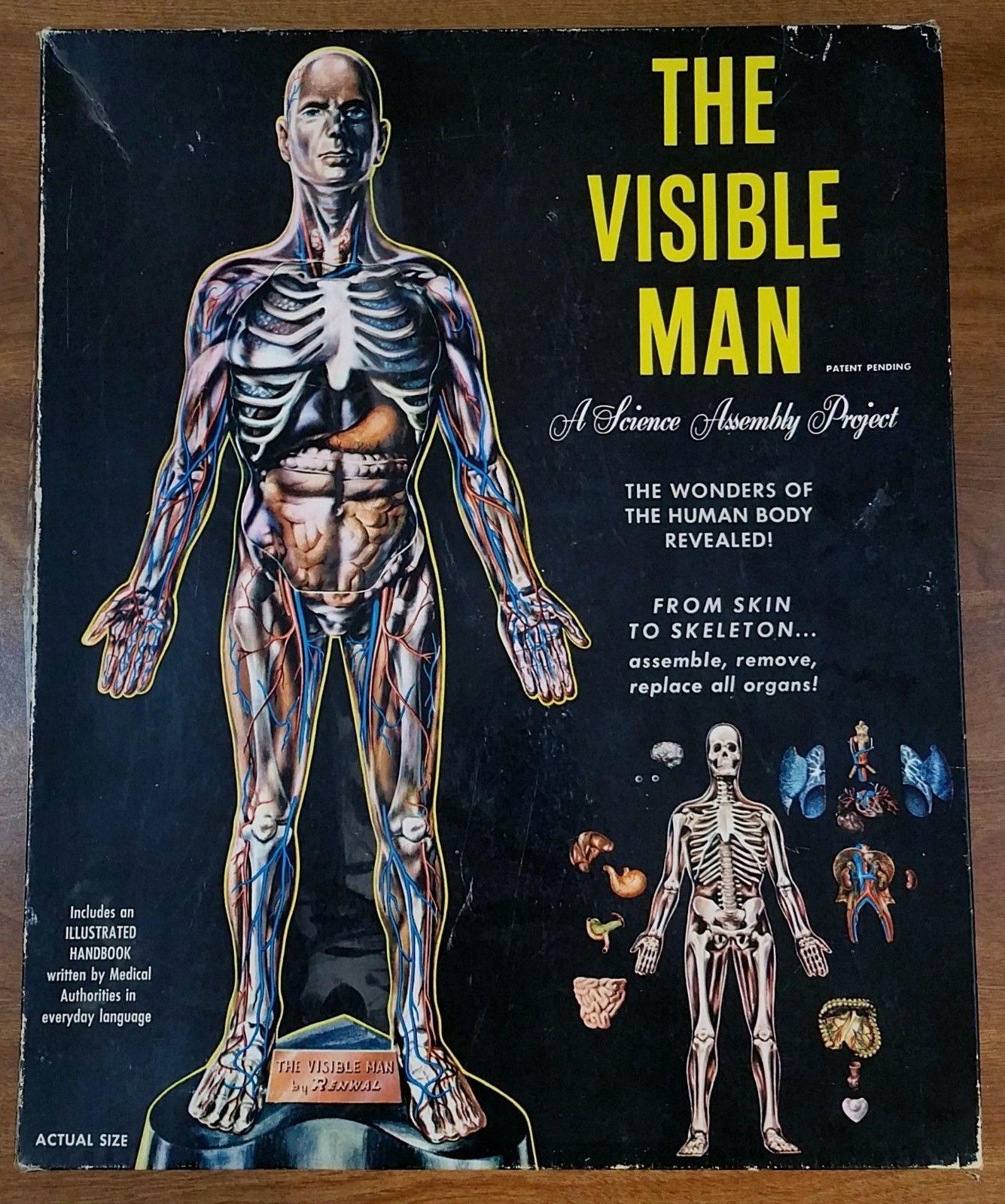 Vintage Renwall The Visible Man Science and 50 similar items
