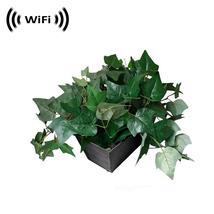 WiFi IP Wireless Spy Camera Hidden in Fake Plant by SCS Enterprises ® - $279.00+