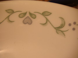 Corelle by Corning Country Gardens Plates (2)  EUC - $16.80