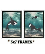 5x7 Killer Whale Pictures Orca Dolphins Ocean Deep Sea Fish Wall Hangings - $8.99+
