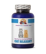 PETS HEALTH SOLUTION aggressive cat calming diffuser - RELAXANT FOR CATS... - $22.97