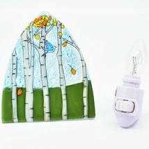 Handmade Fused Art Glass Bluebird & Aspen Scene Nightlight Night Light Ecuador