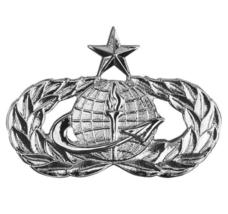 Mid Size Genuine U.S. Air Force Usaf Breast Badge: Officer Force Support: Senior - $15.82