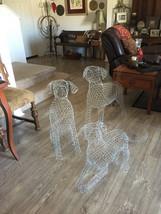 Labrador Topiary Frame - $135.00