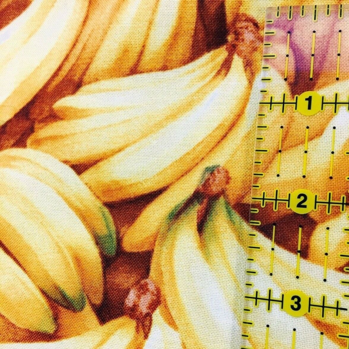 Banana Bunches Fabric Kyles Marketplace by RJR Fabrics Yellow 1/2 Yard