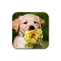 Cute Golden Retriever Puppy Puppies Dogs Pet Animal (Square) Rubber Coaster - $2.99