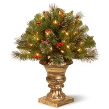 2 ft. Crestwood Spruce Porch Artificial Bush with Clear Lights - $59.70