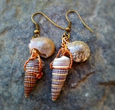 Sea Shell Wire Wrappped Dangle Earrings - $20.00