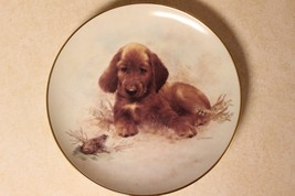 Ceramic Collectors Plate 'Puppy & Frog' by Joseph Giordano Limit. Edit. ... - $9.99