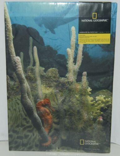New Creative 25446 Underwater Sea Photo Indoor Outdoor Flag Seahorse