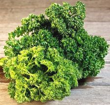 10 Variety Seeds - Parsley Triple Moss Curled Seeds  - $12.99+