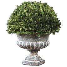 Uttermost 60113 Preserved Boxwood Garden Urn, Green - $204.60