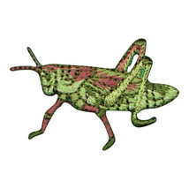 "Grasshopper Applique Patch - Insect, Antennae, Bug Badge 1-5/8"" (Iron on) - $3.25"