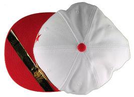 Dissizit! Side Bear White Red Brim Snapback Cap Hat California Star Flag image 6