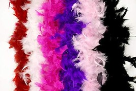 Touch of Nature 40 Gram Feather Boa Party Assortment - $33.22