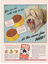1944 Morgan Dennis OLD ENGLISH SHEEPDOG Pard dog food Print Ad - $9.99