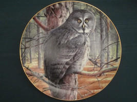 GREAT GREY OWL collector plate THE GREY GHOST Trevor Boyer OWLS Danbury ... - $19.95