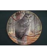 GREAT GREY OWL collector plate THE GREY GHOST Trevor Boyer OWLS Danbury ... - $19.95