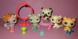 Littlest Pet Shop LPS Cat Kitten #197 #122 #82 #1027 Persian Push Play C... - $30.00