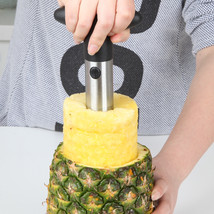 TAROOHOME 1pc Cutter Kitchen Tool Peeler Pineapple Fruit - $15.95