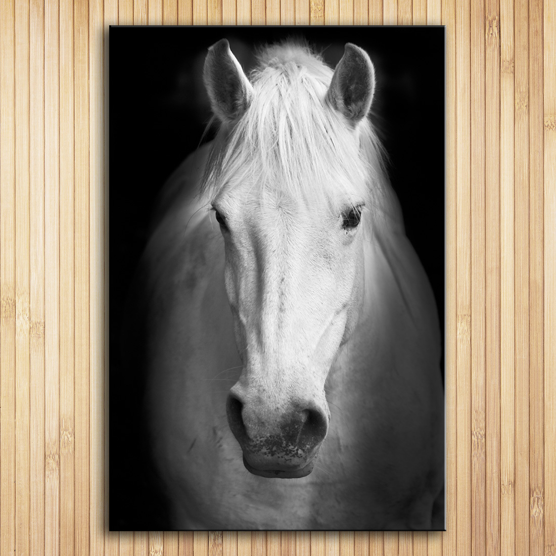 Wall Art Prints Fine Art Prints Wall painting White  Animal Picture For Living R