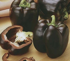100pcs Very Delicious Black Sweet Pepper Seeds organic bell pepper veget... - $17.10