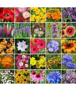 Wildflower Southeast Mix Seeds (14g+Seeds) - $34.93