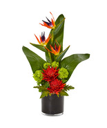 Bird of Paradise Tropical Arrangement in Black Vase - $111.01