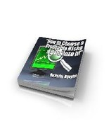 How To Choose A Profitable Niche & Dominate It! - ebook - $0.99