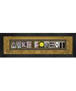 Personalized Wake Forrest University Campus Letter Art Framed Print - $39.95
