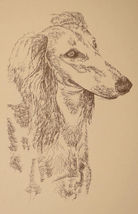 Saluki Dog Art Portrait Print #25 Kline adds dog name free. Drawn from w... - $49.95