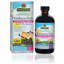 Nature's Answer Sambucus Elderberry Syrup for Kids 4 Fluid Ounce | Kid F... - $11.87