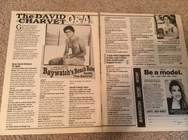 David Charvet teen magazine pinup clipping questions and answers Tiger Beat