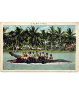 A Joy Ride In Florida Black Americana Vintage Post Card - $5.00