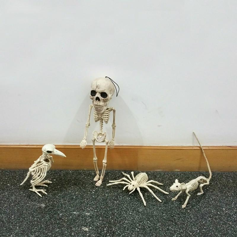 Skeleton Spider Plastic Animal Skeleton Bones for Horror Decoration Creepy Props