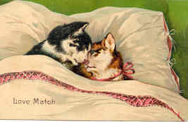 A Love Match Paul Finkenrath Vintage 1912 Post Card - $8.00