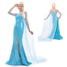 Cheap Frozen Snow Queen Elsa Blue Fancy Princess Dress Cosplay Costume - $35.65